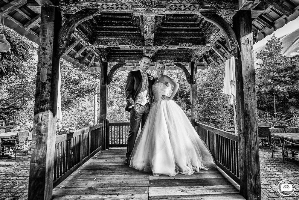 Eine Hochzeit im Zoo – Zoom Gelsenkirchen