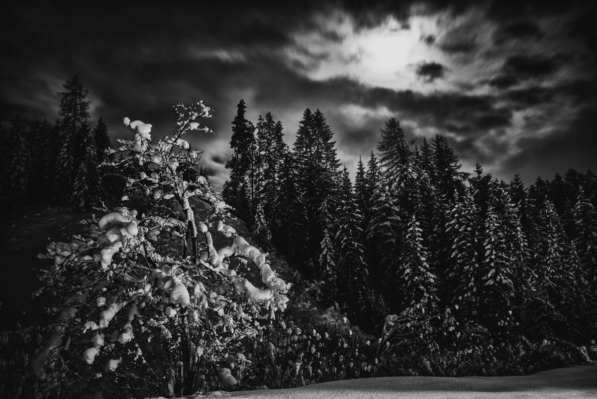 winterurlaub-2014-2015_ehrwald_hochzeitsfotograf-david-hallwas-19