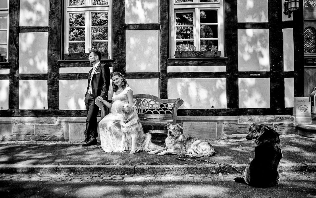 Hochzeit auf Schloss Westerholt – Herten