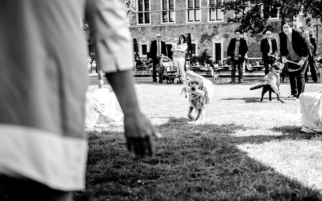 Hochzeit mit Hunden auf Schloss Raesfeld