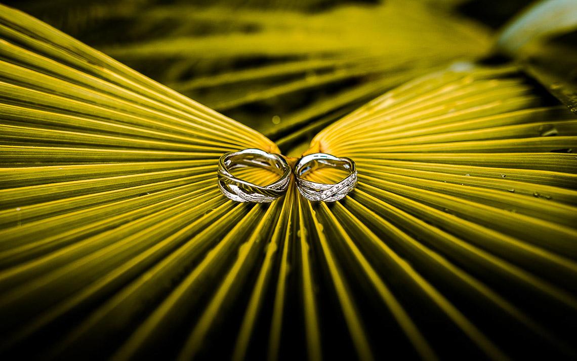 Hochzeitsringe Hochzeitsfotograf Gardasee
