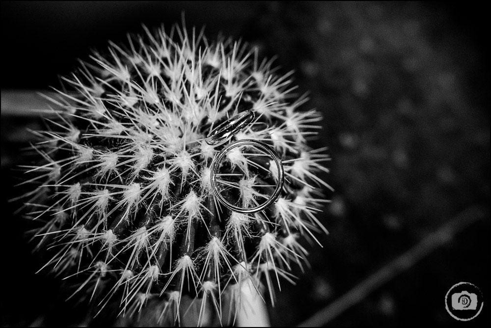 hochzeitsfotograf-voshoevel_david-hallwas-144