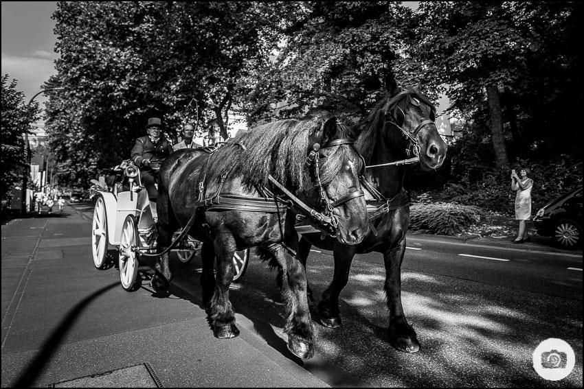 hochzeitsfotograf-bonn_david-hallwas-185