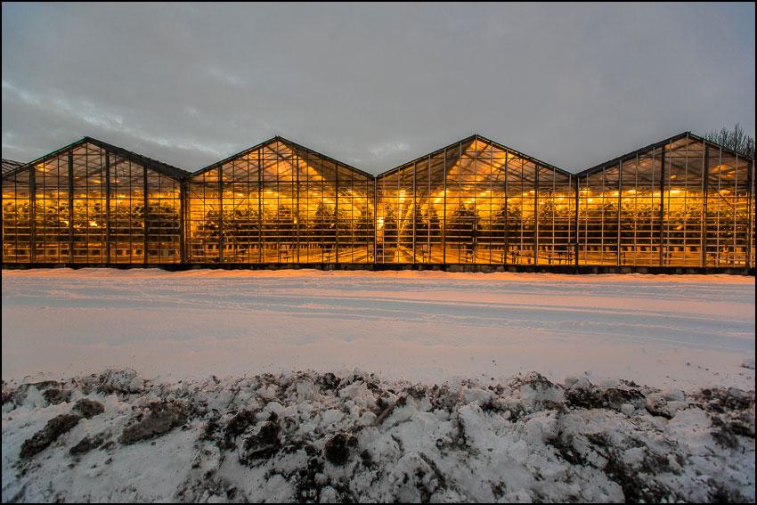 Auf Abwegen: Ein Hochzeitsfotograf auf Island 4