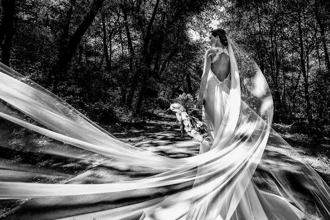 Hochzeitsbilder Best-Of 2019 35